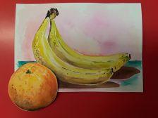 Exposició 'La fruita'