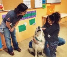 Una nena participa a una sessió de teràpia amb gossos
